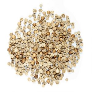 Graines de Coriandre (full)